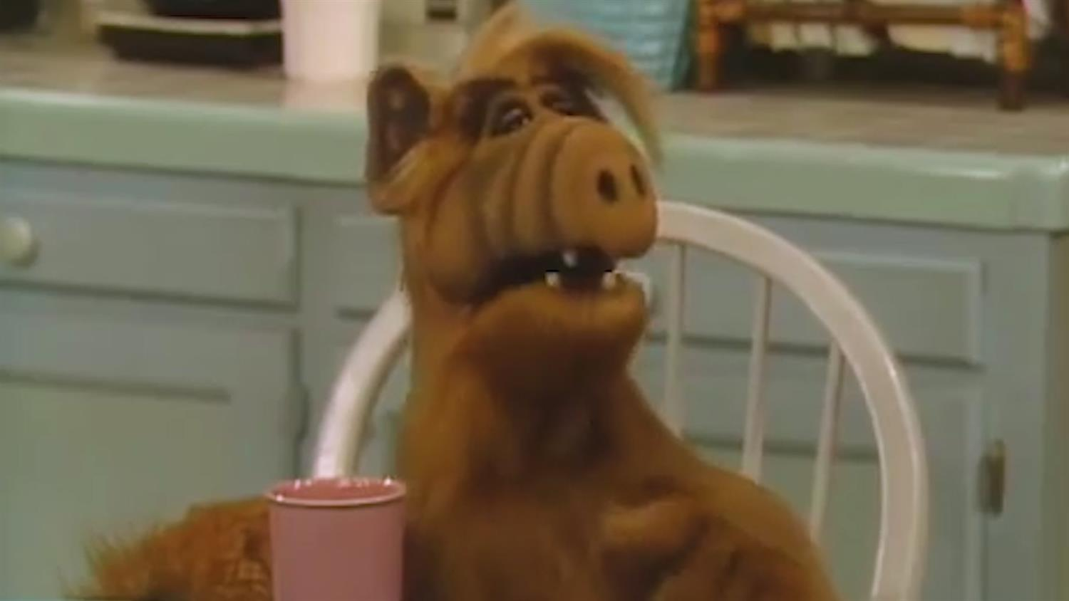 Alf: Everything You Didn't Know
