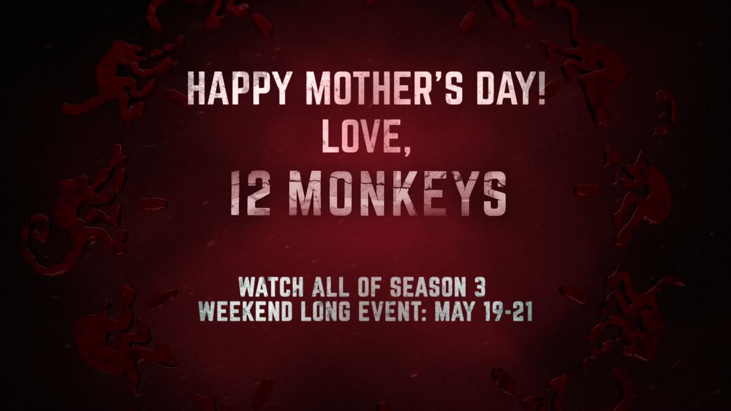 Happy Mother's Day From 12 Monkeys